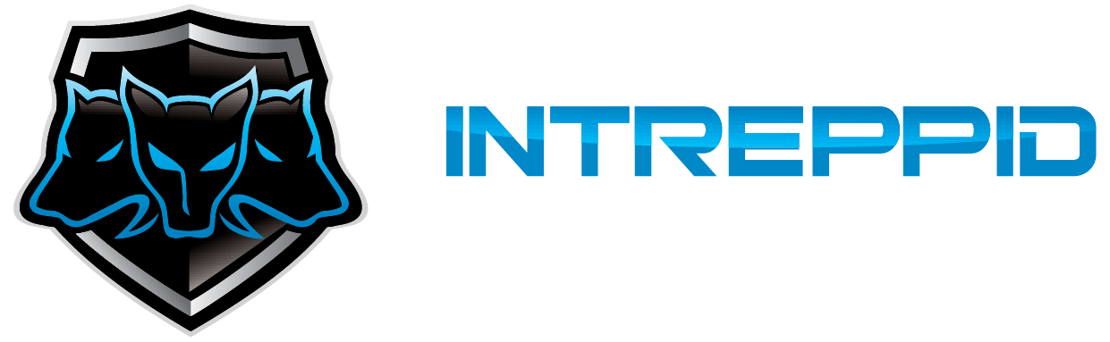 Dedicated Game Servers and DDoS Protection Provided by Intreppid.com