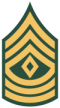 First Sergeant [1SG]