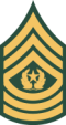 Command Sergeant Major [CSM]