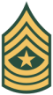 Sergeant Major [SGM]